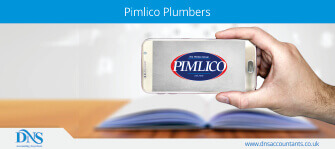 Plumber springs a leak on aggregator Pimlico Plumbers: Supreme Court rules in his favour