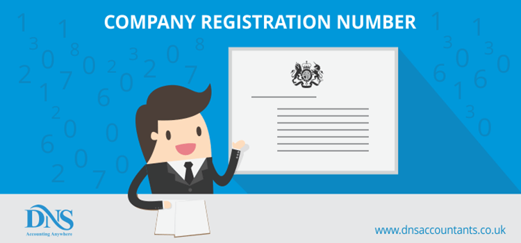 Company Registration Number